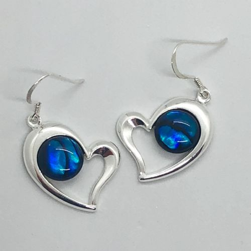 Paua Blue Earrings - Large Heart PE17-LH